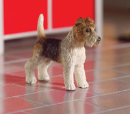 Tommy The Fox Terrier