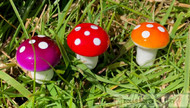 3 Coloured Toadstools