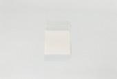 "Economy Plastic Bags with White Label Block,  2"" x 3"", Box of 1000, Item No. 61.13101"