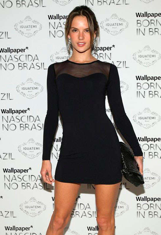 David Lerner Long Sleeve Mesh Dress In Black As Seen On Alessandra