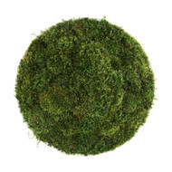 "Moss Circle Medium 20"""