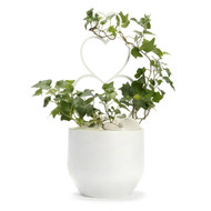 Germany Round Medium White - Ivy with Heart Trellis