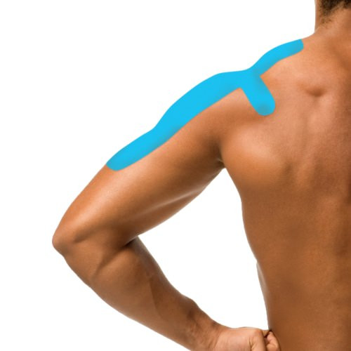 Shoulder Kinesiology Pre Cut
