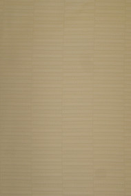 Top Quality Swiss Voile (Atiku) - Beige - SV14