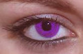 Purple Contact Lenses