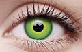 Green Hulk Contact Lenses