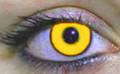 Yellow contact lenses. Contains 1 pair plus handy lens storage case