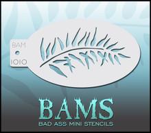 BAM Fern