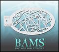 Bam Mosaica Stencil 2008