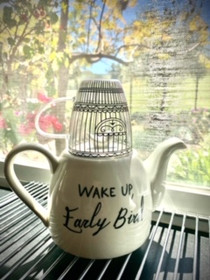 Wake Up Early Bird Ceramic Teapot with Birdcage Cup - Ships Free
