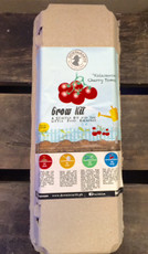 Grow Kits- Cherry Tomato