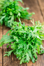 Wild Arugula: Wholesale Pack