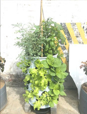 Vertical Food Garden Tower