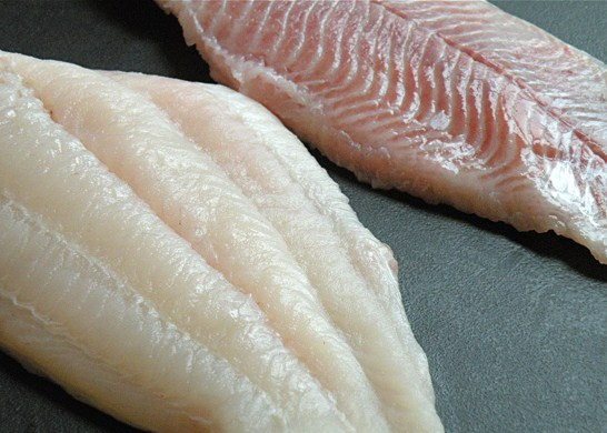 Catfish Fillets (Price per Pound) - Fisherman's Cove Seafood