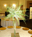 Dendrobium Orchids Tree Table Centerpiece