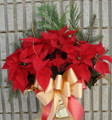 "Red Poinsettia 10"" Pot"