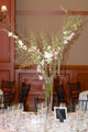 Wedding Table Centerpiece Pink And White Orchids Tree