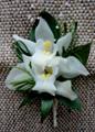 White Cymbidium Orchids Boutonniere