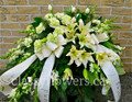 Small open casket spray with cream flowers $115