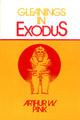 Gleanings in Exodus (Pink)