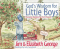 God's Wisdom for Little Boys: Character-Building Fun from Proverbs (George)