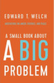 A Small Book About A Big Problem: Meditations on Anger, Patience, and Peace (Welch)