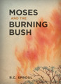 Moses and the Burning Bush (Sproul)