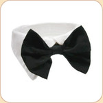 Bow Tie Collar in Black