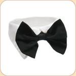 Bow Tie Collar in Black