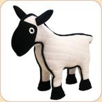 One Tough Sheep