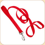 Double Handle Nylon Dog Leash--Red
