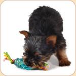 Pup Pine Cone Dental Chew--Small