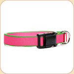 Eco-Friendly Collar--pink & green