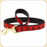 Black Paws on Red Leash