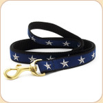 North Star on Blue Leash