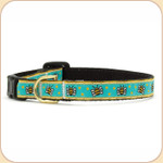 Bumblebee on Blue Cat Collar