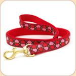 All Hearts Leash