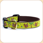 Squirrels & Nuts Collar