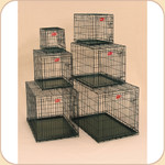 Midwest Lifestages Crate with Divider Panel