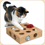 Kitty's Paw Play Toy Box