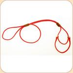 Nylon Martingale Red Leash