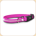 LED Illuminated Collar in Fuchsia