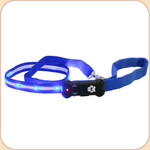 LED Illuminated Leash in Blue