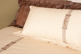 Set of Two Coordinating Pillow Shams