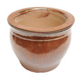 "6"" Rd Self Water Pot Copper"