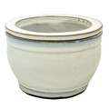 "6"" Rd Self Water Pot White"