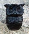Mr Owl Black