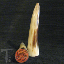 Carved Ox Horn Dragon Character Chop