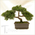9 Inch Tall Synthetic Cedar Bonsai Tree