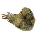 3.75in Glittered Sisal Bird
